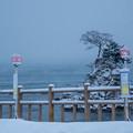 Photos: 雨晴海岸 岩崎、岩崎口バス停