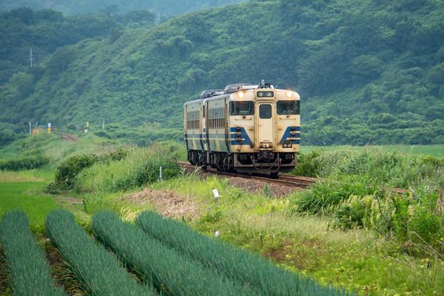 Photos: 五能線 東八森駅~八森駅