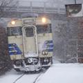 Photos: 五能線 ウェスパ椿山駅