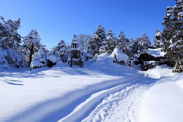 上杉神社_冬の晴れ間1