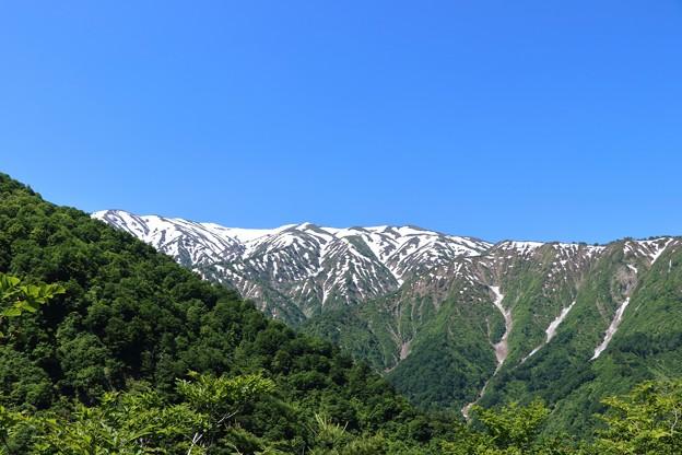 20200530倉手山(くらてやま)IMG_9952