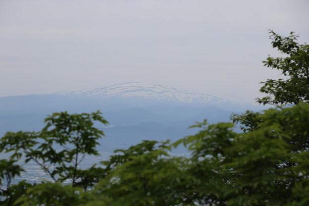 20200613面白山(おもしろやま)IMG_0662