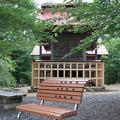 Photos: 20200620花咲山 クアオルトウォーキング 葉山コースIMG_0824