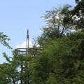 Photos: 20200620花咲山 クアオルトウォーキング 葉山コースIMG_0852