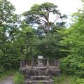 Photos: 20200620かみのやま温泉クアオルト健康ウォーキング 西山コースIMG_0966
