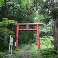 Photos: 20200627白鷹山(しらたかやま)IMG_1058