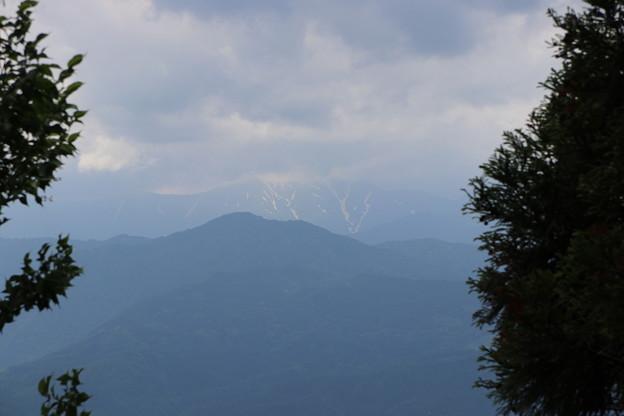 Photos: 20200627白鷹山(しらたかやま)IMG_1175
