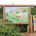 Photos: 20200718蔵王山コマクサ姫に逢いに (b'∀゚*)IMG_1528