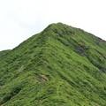 Photos: 20200724(南蔵王縦走登山コース)IMG_1995