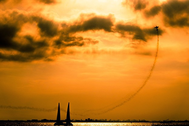 写真: 飛び翔る夢