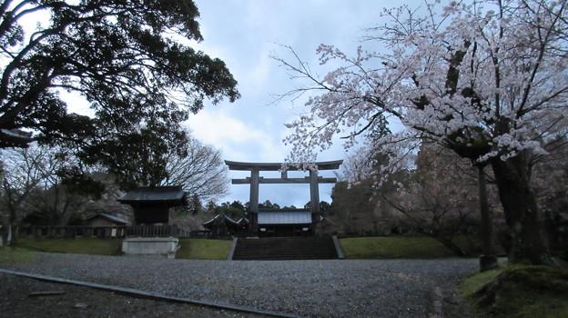 吉野神宮(奈良県吉野町吉野山)二の鳥居