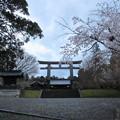Photos: 吉野神宮(奈良県吉野町吉野山)二の鳥居