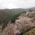 Photos: 吉野山下千本展望所(吉野郡吉野町)