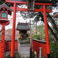 Photos: 金峯山寺(吉野町吉野山)吉富稲荷大明神