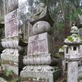 高野山金剛峯寺 奥の院(高野町)薩摩島津家墓所
