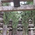 Photos: 高野山金剛峯寺 奥の院(高野町)筑後久留米有馬家墓所