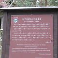 高野山金剛峯寺 奥の院(高野町)越前松平家石廟