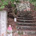 Photos: 高野山金剛峯寺 奥の院(高野町)見真大師墓
