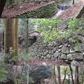 鈴鹿峠(三重県亀山市~滋賀県甲賀市)坂之下宿古町跡
