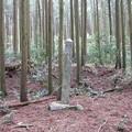 鈴鹿峠(三重県亀山市~滋賀県甲賀市)田村神社跡