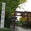 Photos: 根津神社(文京区根津)