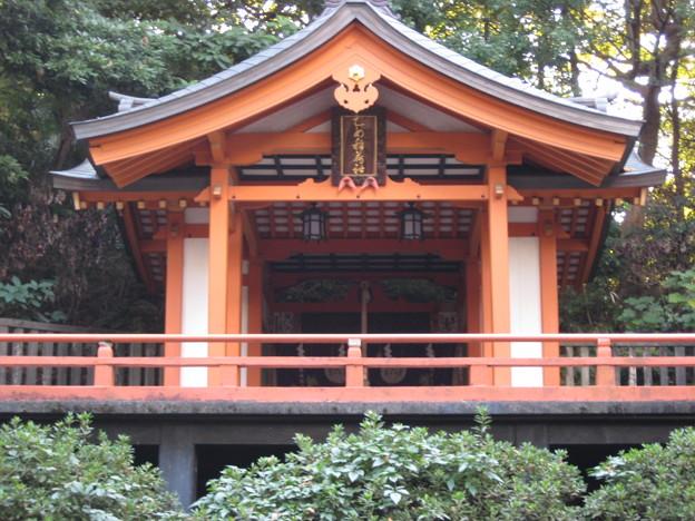 根津神社(文京区根津)乙女稲荷