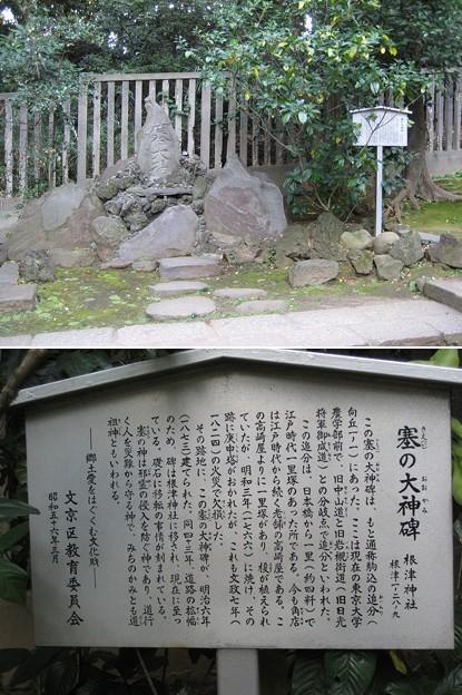 根津神社(文京区根津)寒の大神碑