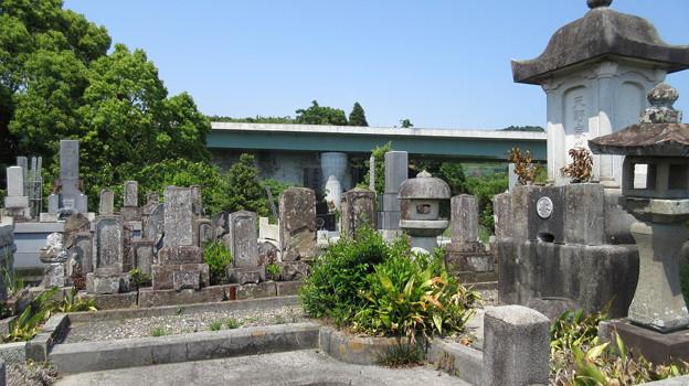 大乗寺(清水区)天野家墓所