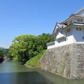 Photos: 駿府城(葵区。静岡市営 駿府城公園)二の丸堀・坤櫓