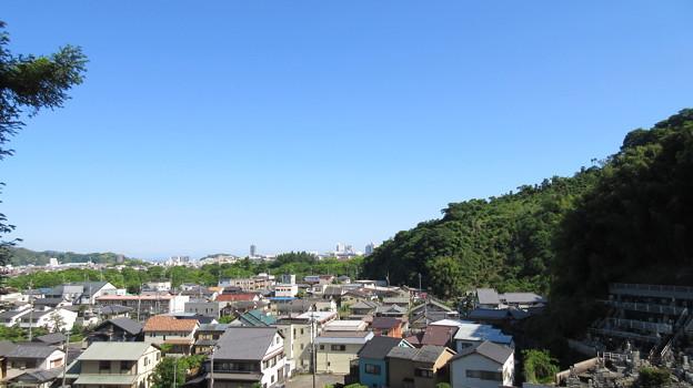 臨済寺(葵区)太原雪斎墓前より東南東