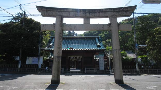 駿河国総社 浅間神社(静岡市葵区)石鳥居