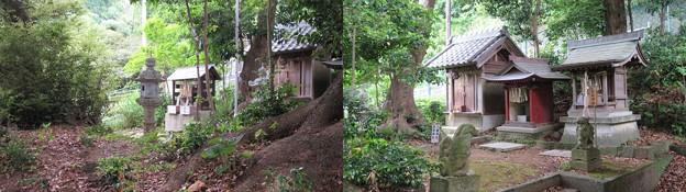 浅間神社(駿河区用宗城山町)