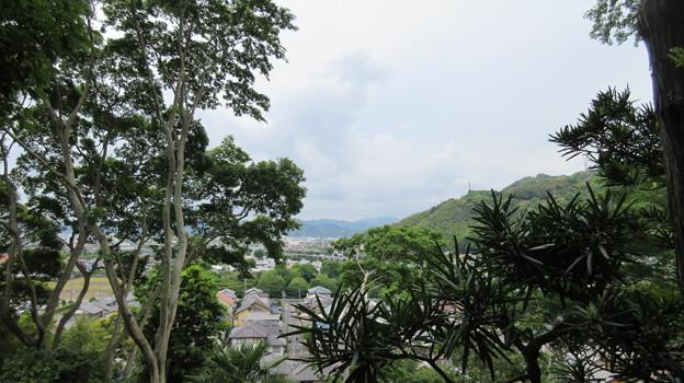 石脇城(焼津市)西