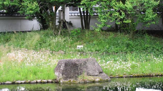 田中城下屋敷(藤枝市)築山跡