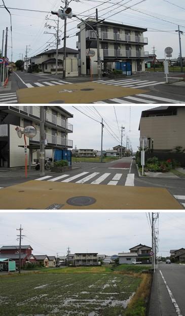 田中城(藤枝市)外堀