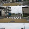Photos: 田中城(藤枝市)外堀