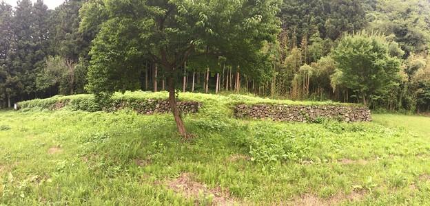 潜龍院・古谷館/岩櫃山(東吾妻町)
