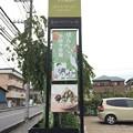 Photos: 山香煎餅本舗 草加せんべいの庭(埼玉県)