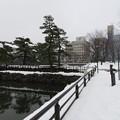 Photos: 富山城(富山市)内堀 ・二の丸