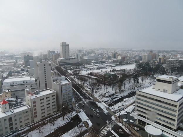 富山市役所展望塔より(富山県)富山城