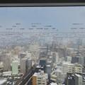 写真: 富山市役所展望塔より