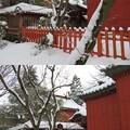 Photos: 尾崎神社(金沢市)本殿