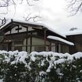 豪姫住居遺址/黒門前緑地(金沢市)