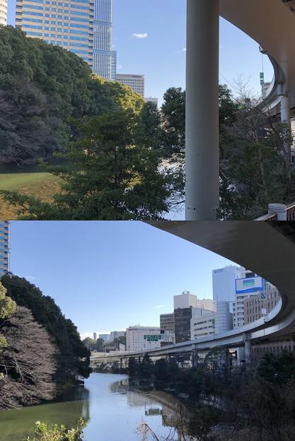 弁慶堀(港区元赤坂)