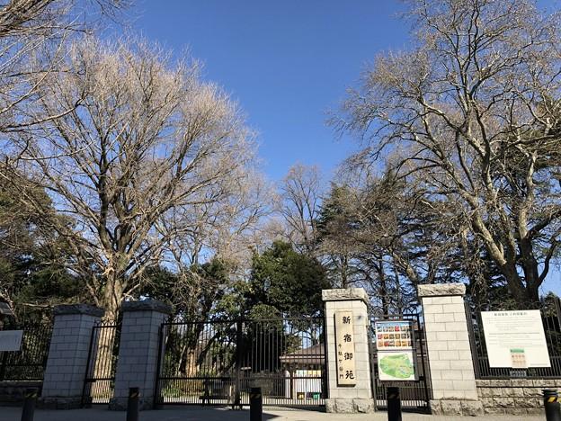 新宿御苑(渋谷区)千駄ヶ谷門