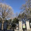 写真: 新宿御苑(渋谷区)千駄ヶ谷門