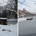 Photos: 金沢城(石川県営 金沢城公園)大手堀