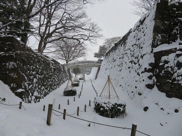 金沢城(石川県営 金沢城公園)二の丸水堀跡