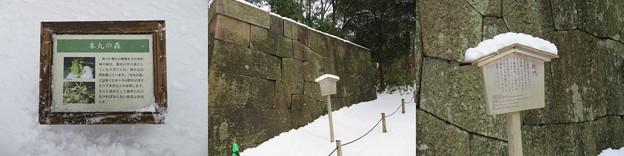 金沢城(石川県営 金沢城公園)本丸 鉄門跡
