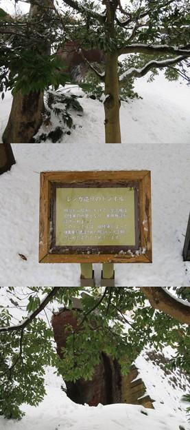 金沢城(石川県営 金沢城公園)明治期掘削トンネル